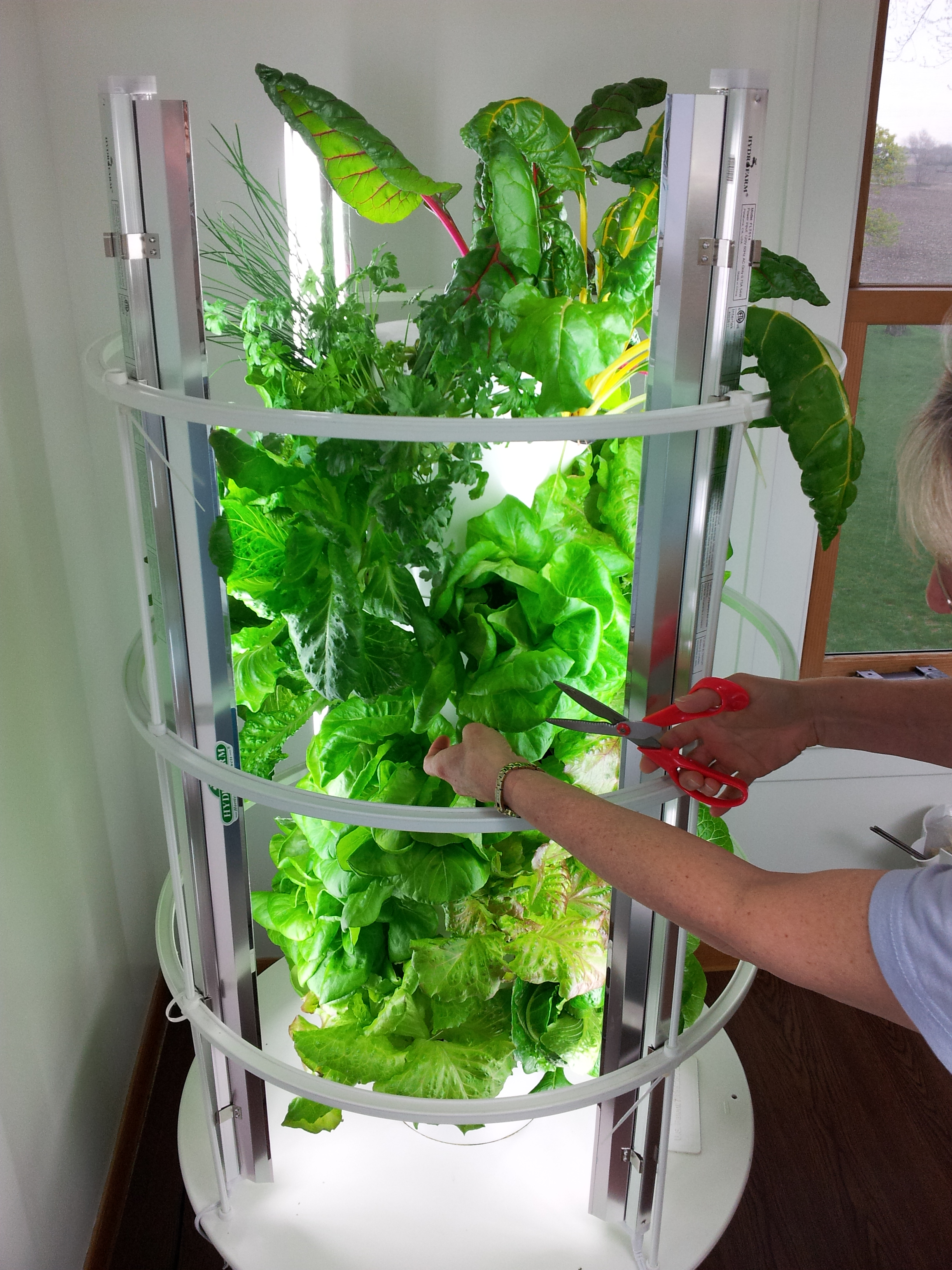 janet johnsons tower garden - Tower Garden